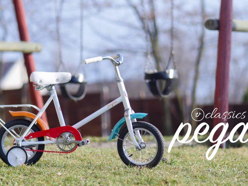 Pegas-Mini (1)